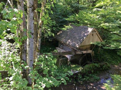 Brandtaler Mühle in der Taugl